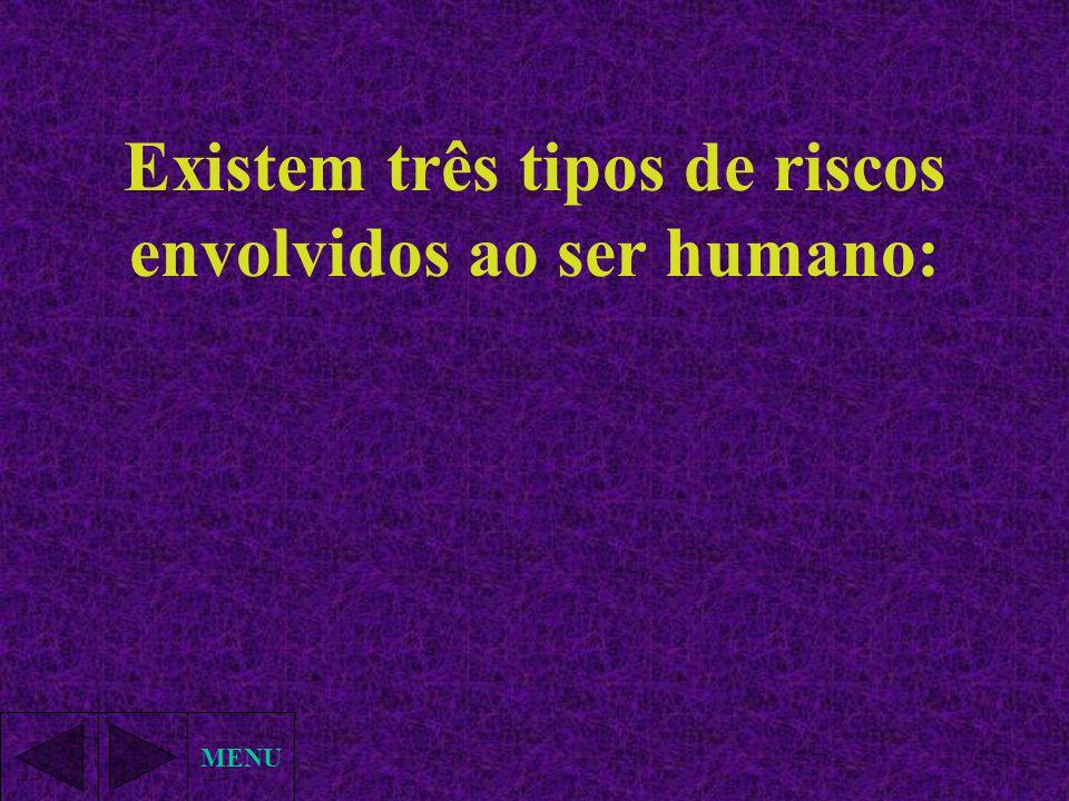 MENU Existem três tipos de riscos envolvidos ao ser humano: