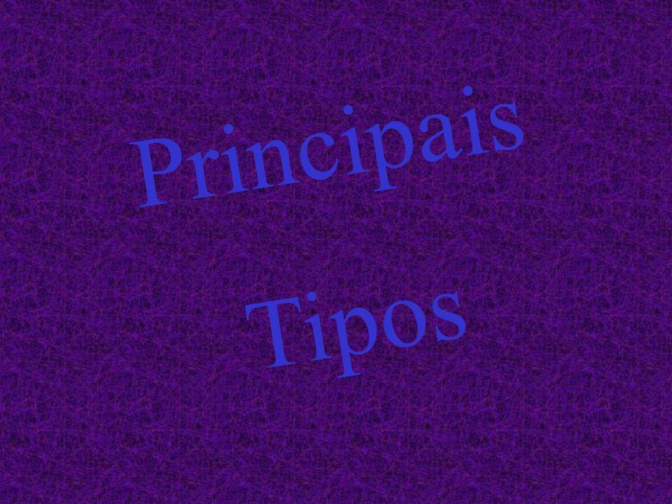 Principais Tipos
