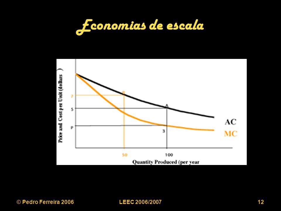 © Pedro Ferreira 2006LEEC 2006/200712 Economias de escala
