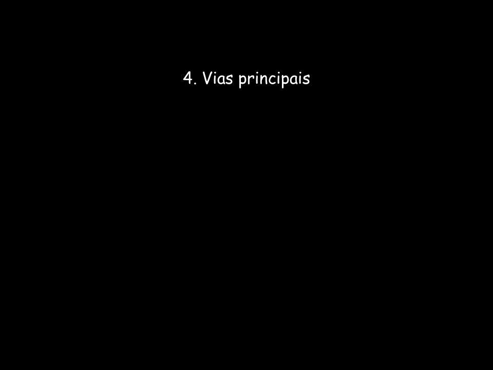 4. Vias principais