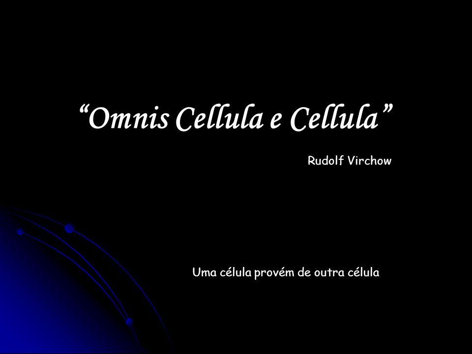 Omnis Cellula e Cellula Uma célula provém de outra célula Rudolf Virchow