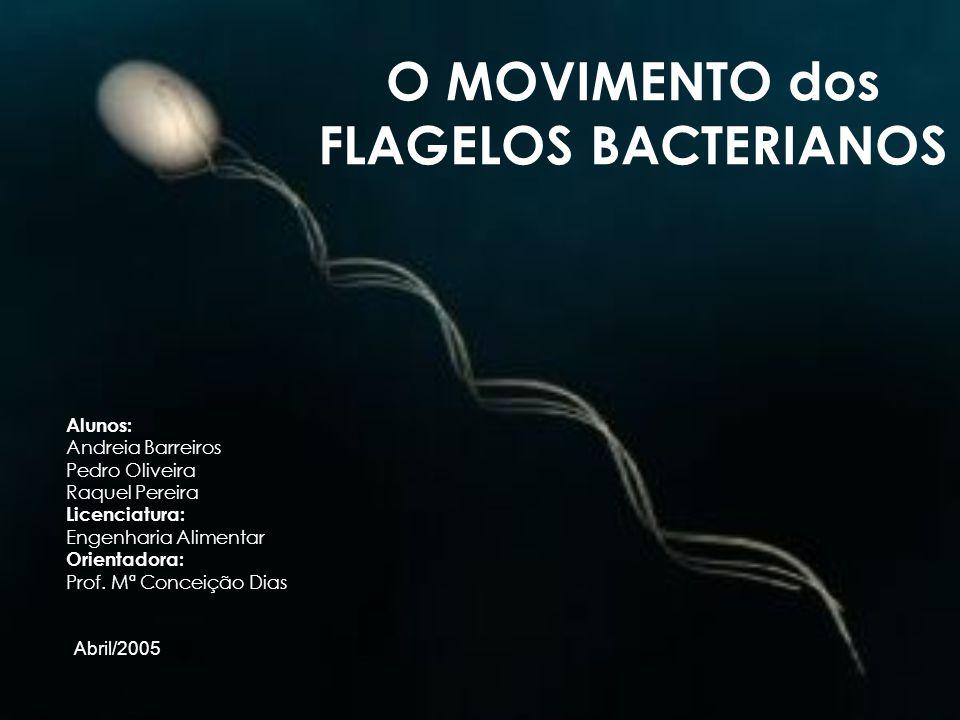 O MOVIMENTO dos FLAGELOS BACTERIANOS Alunos: Andreia Barreiros Pedro Oliveira Raquel Pereira Licenciatura: Engenharia Alimentar Orientadora: Prof. Mª