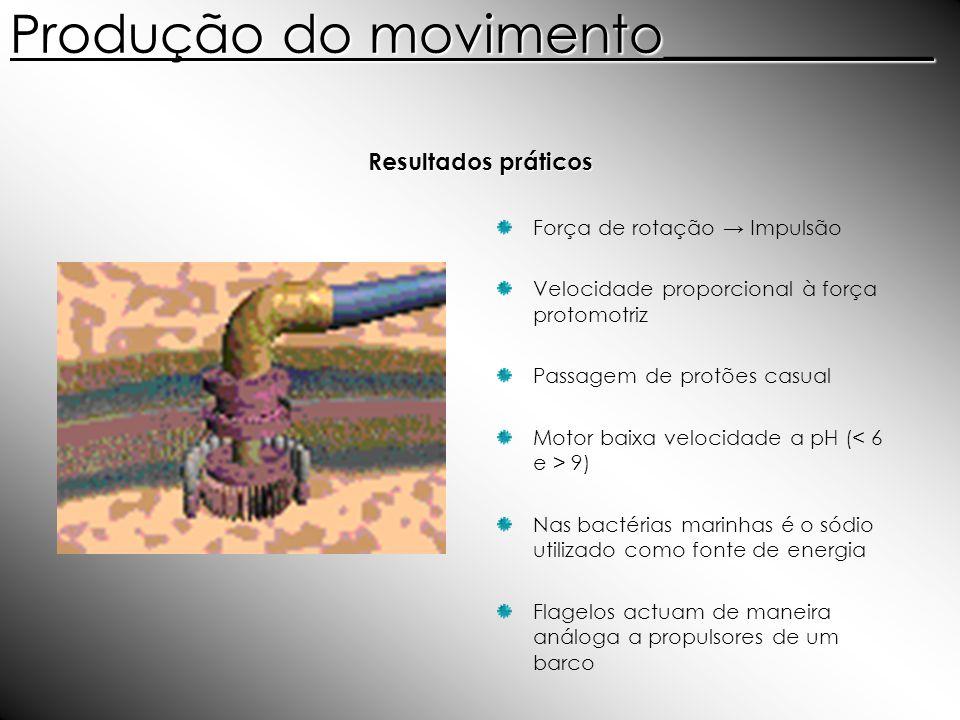 Produção do movimento__________ Força de rotação Impulsão Velocidade proporcional à força protomotriz Passagem de protões casual Motor baixa velocidad