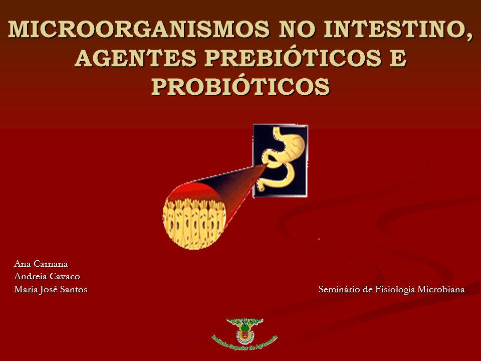 MICROORGANISMOS NO INTESTINO, AGENTES PREBIÓTICOS E PROBIÓTICOS Ana Carnana Andreia Cavaco Maria José Santos Seminário de Fisiologia Microbiana