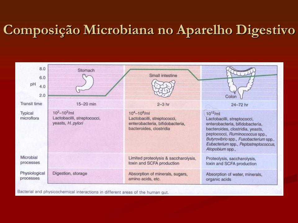 Composição Microbiana no Aparelho Digestivo