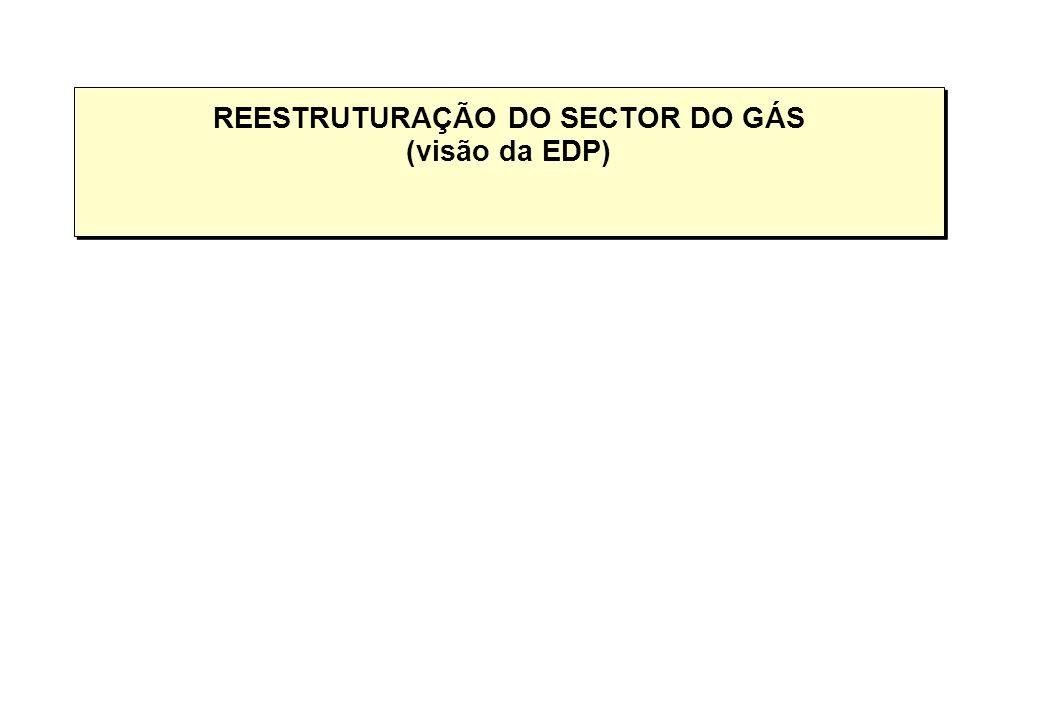 REESTRUTURAÇÃO DO SECTOR DO GÁS (visão da EDP)