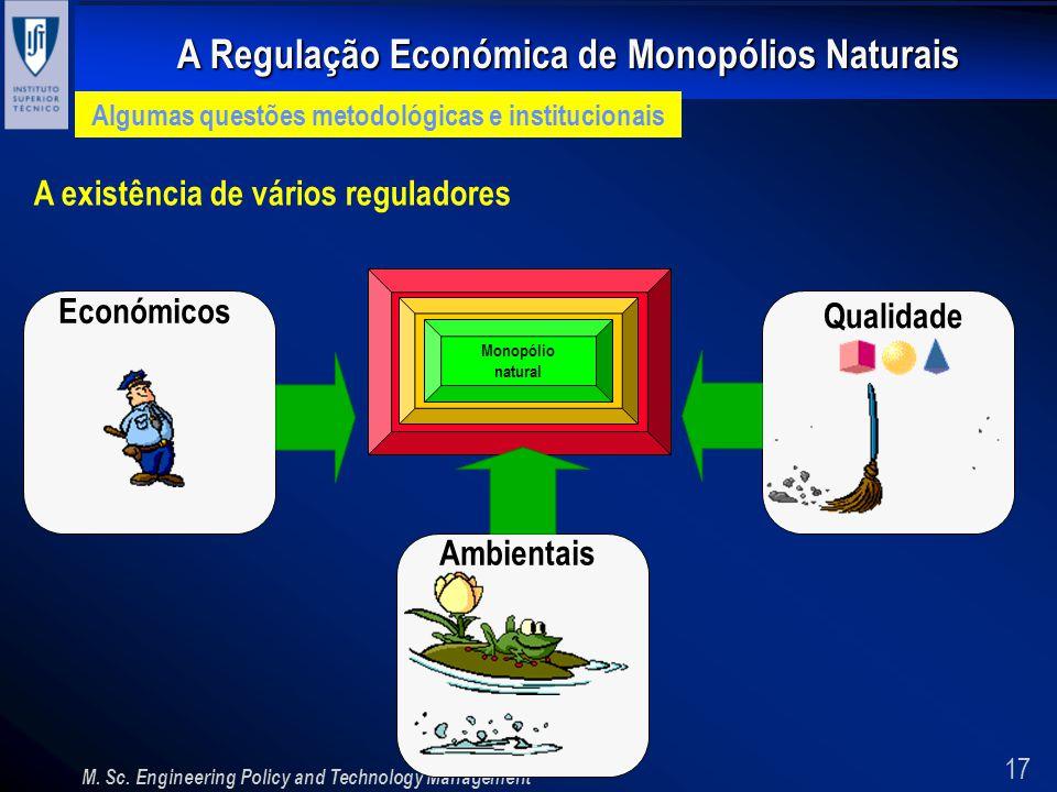 17 A Regulação Económica de Monopólios Naturais M. Sc. Engineering Policy and Technology Management Algumas questões metodológicas e institucionais A