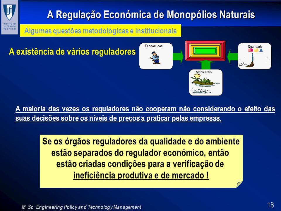 18 A Regulação Económica de Monopólios Naturais M. Sc. Engineering Policy and Technology Management Algumas questões metodológicas e institucionais A