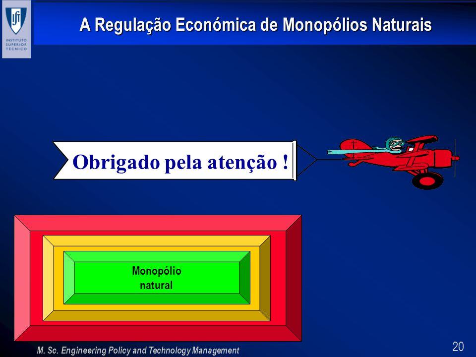 20 A Regulação Económica de Monopólios Naturais M. Sc. Engineering Policy and Technology Management Obrigado pela atenção ! Monopólio natural