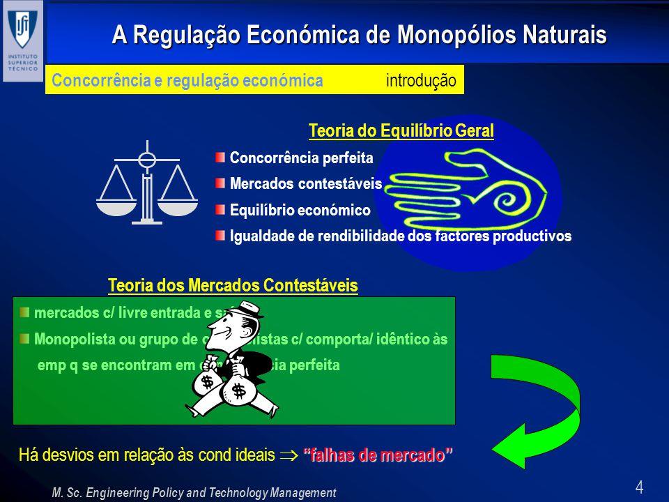 4 A Regulação Económica de Monopólios Naturais M. Sc. Engineering Policy and Technology Management Concorrência e regulação económica introdução Teori