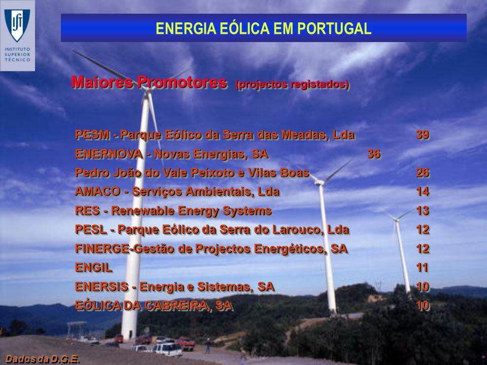 ENERGIA EÓLICA EM PORTUGAL Dados da D.G.E. Maiores Promotores (projectos registados) PESM - Parque Eólico da Serra das Meadas, Lda39 ENERNOVA - Novas