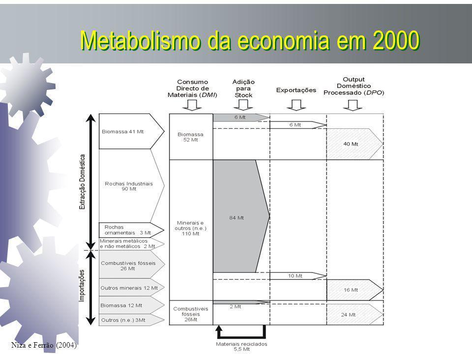 Metabolismo da economia em 2000 Niza e Ferrão (2004)