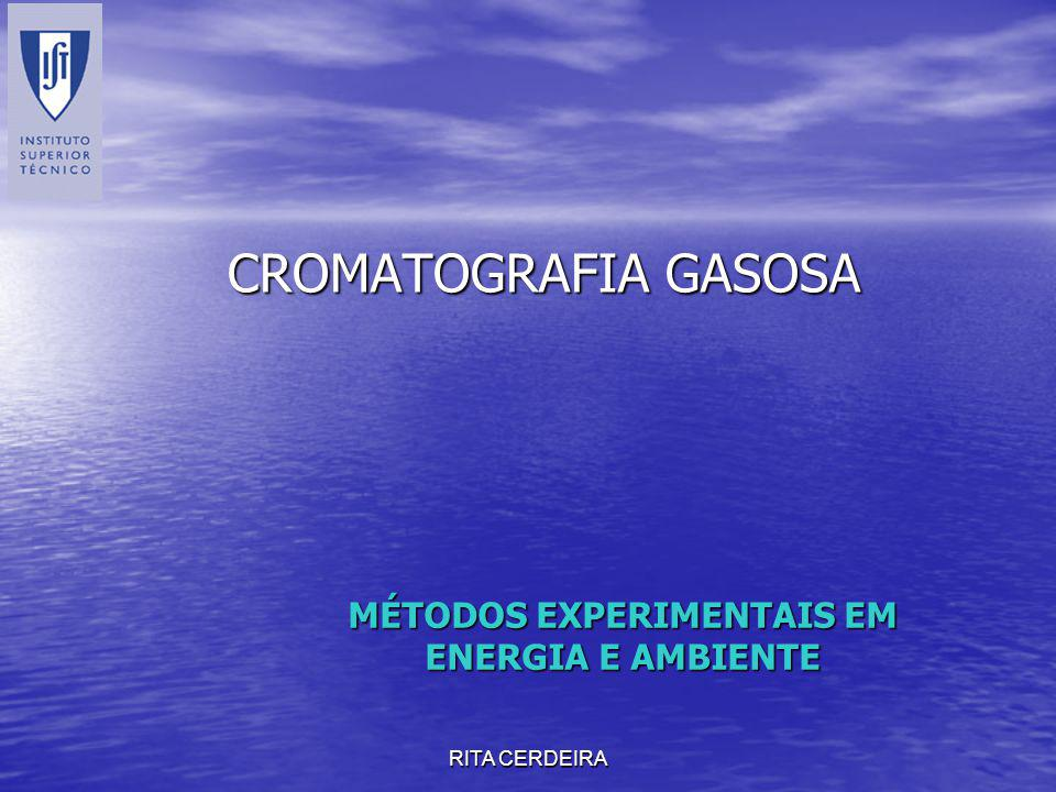 RITA CERDEIRA CROMATOGRAFIA GASOSA MÉTODOS EXPERIMENTAIS EM ENERGIA E AMBIENTE