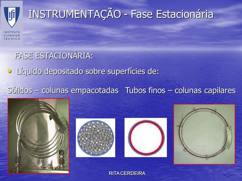 RITA CERDEIRA INSTRUMENTAÇÃO - Fase Estacionária FASE ESTACIONÁRIA: Líquido depositado sobre superfícies de: Líquido depositado sobre superfícies de:
