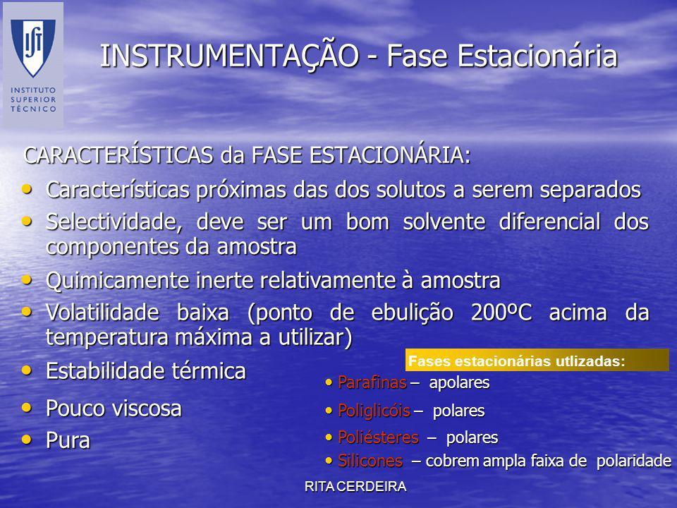 RITA CERDEIRA INSTRUMENTAÇÃO - Fase Estacionária CARACTERÍSTICAS da FASE ESTACIONÁRIA: Características próximas das dos solutos a serem separados Cara
