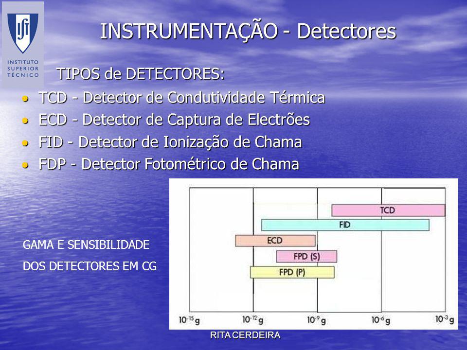 RITA CERDEIRA INSTRUMENTAÇÃO - Detectores TIPOS de DETECTORES: FID - Detector de Ionização de Chama FID - Detector de Ionização de Chama TCD - Detecto
