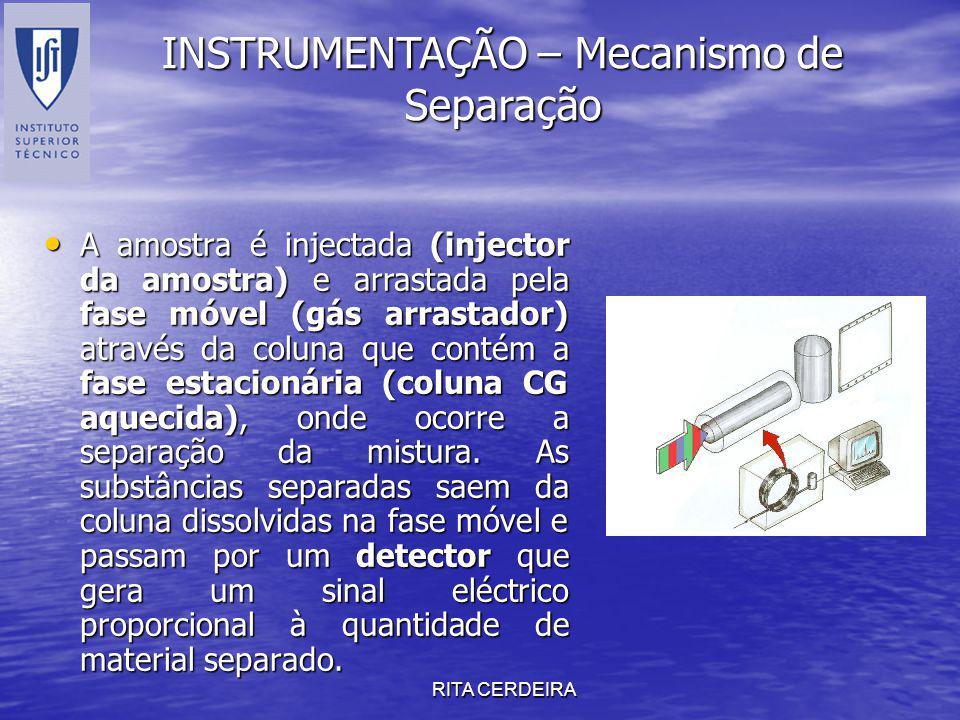 RITA CERDEIRA A amostra é injectada (injector da amostra) e arrastada pela fase móvel (gás arrastador) através da coluna que contém a fase estacionári