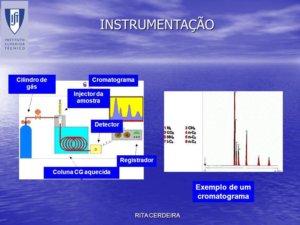RITA CERDEIRA Cilindro de gás Injector da amostra Coluna CG aquecida Detector Registrador Exemplo de um cromatograma INSTRUMENTAÇÃO Cromatograma