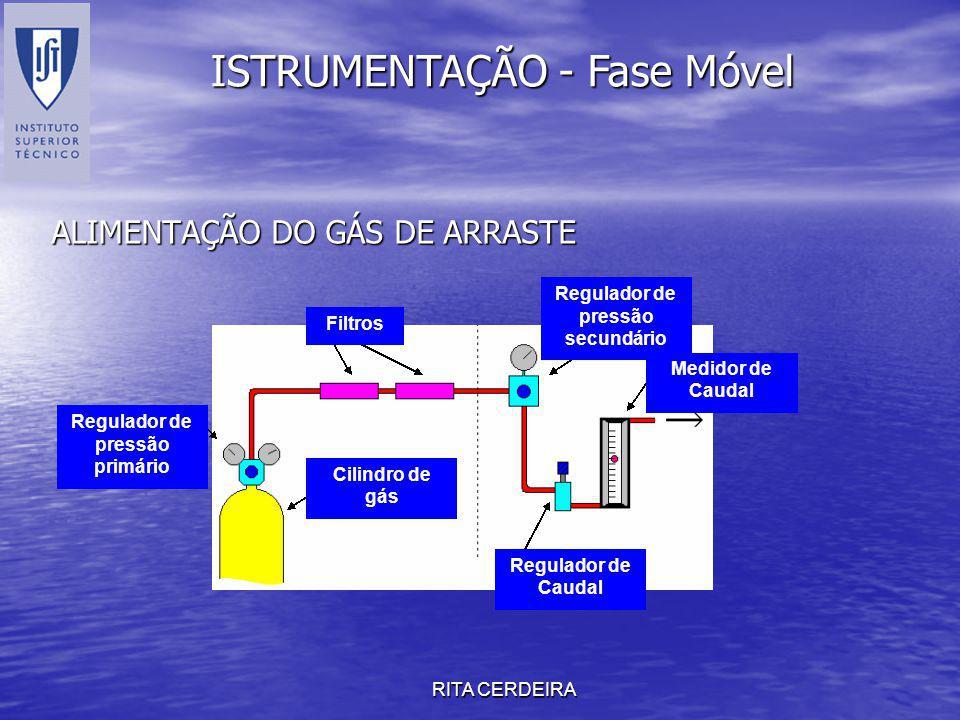 RITA CERDEIRA ALIMENTAÇÃO DO GÁS DE ARRASTE ISTRUMENTAÇÃO - Fase Móvel Cilindro de gás Regulador de pressão primário Filtros Regulador de Caudal Medid