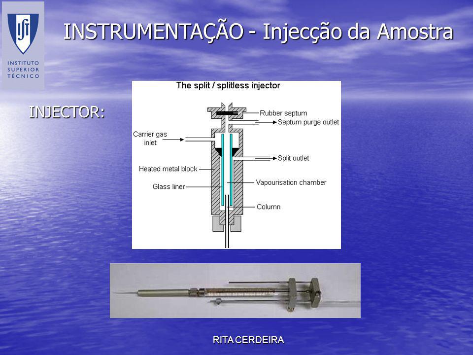 RITA CERDEIRA INSTRUMENTAÇÃO - Injecção da Amostra INJECTOR: