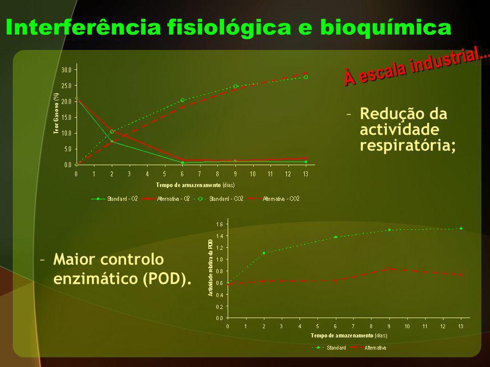 –Redução da actividade respiratória; À escala industrial... Interferência fisiológica e bioquímica –Maior controlo enzimático (POD).