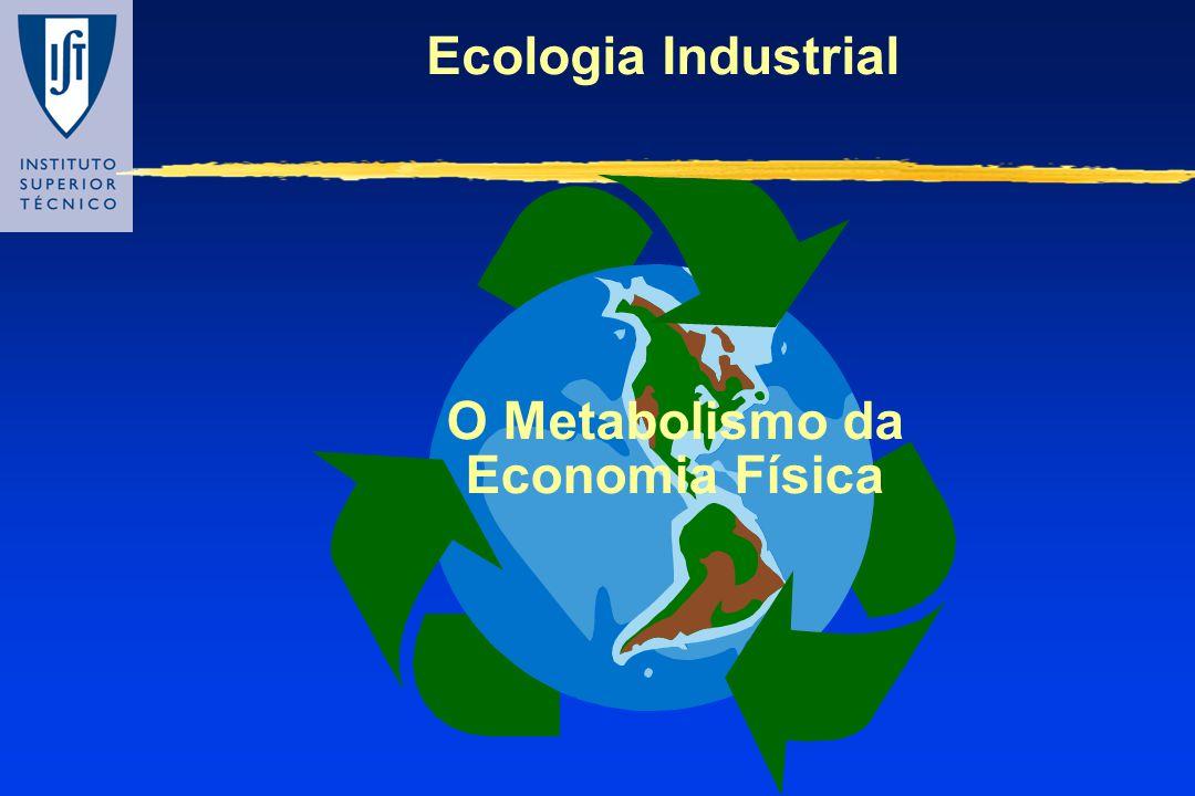 Ecologia Industrial O Metabolismo da Economia Física