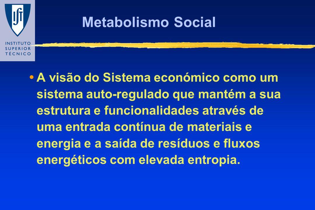 Metabolismo Social A visão do Sistema económico como um sistema auto-regulado que mantém a sua estrutura e funcionalidades através de uma entrada cont