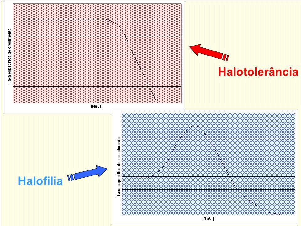 Halofilia Halotolerância