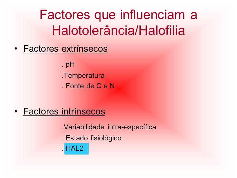 Factores que influenciam a Halotolerância/Halofilia Factores extrínsecos. pH.Temperatura. Fonte de C e N Factores intrínsecos.Variabilidade intra-espe