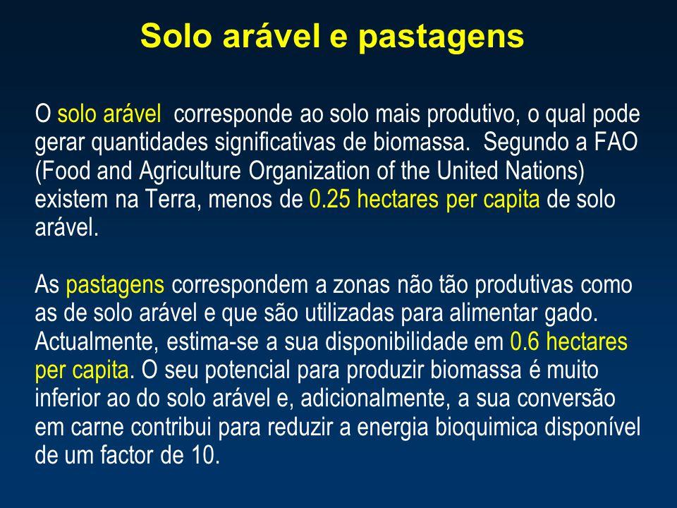 Solo arável e pastagens O solo arável corresponde ao solo mais produtivo, o qual pode gerar quantidades significativas de biomassa. Segundo a FAO (Foo