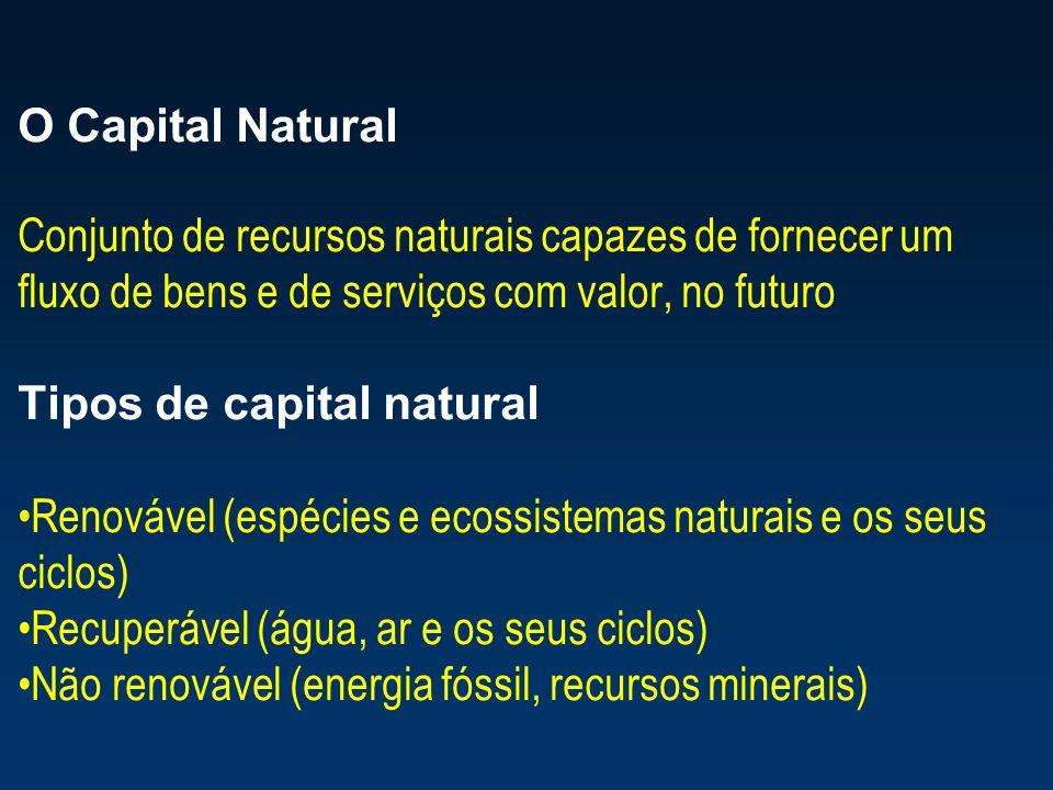 O Capital Natural Conjunto de recursos naturais capazes de fornecer um fluxo de bens e de serviços com valor, no futuro Tipos de capital natural Renov