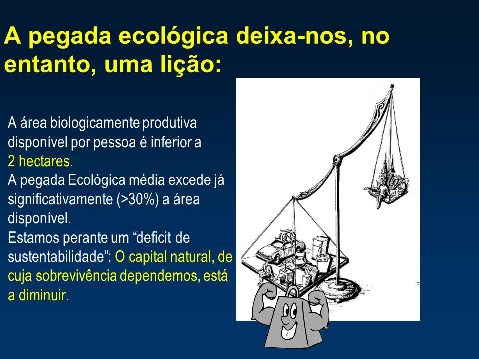 A pegada ecológica deixa-nos, no entanto, uma lição: A área biologicamente produtiva disponível por pessoa é inferior a 2 hectares. A pegada Ecológica