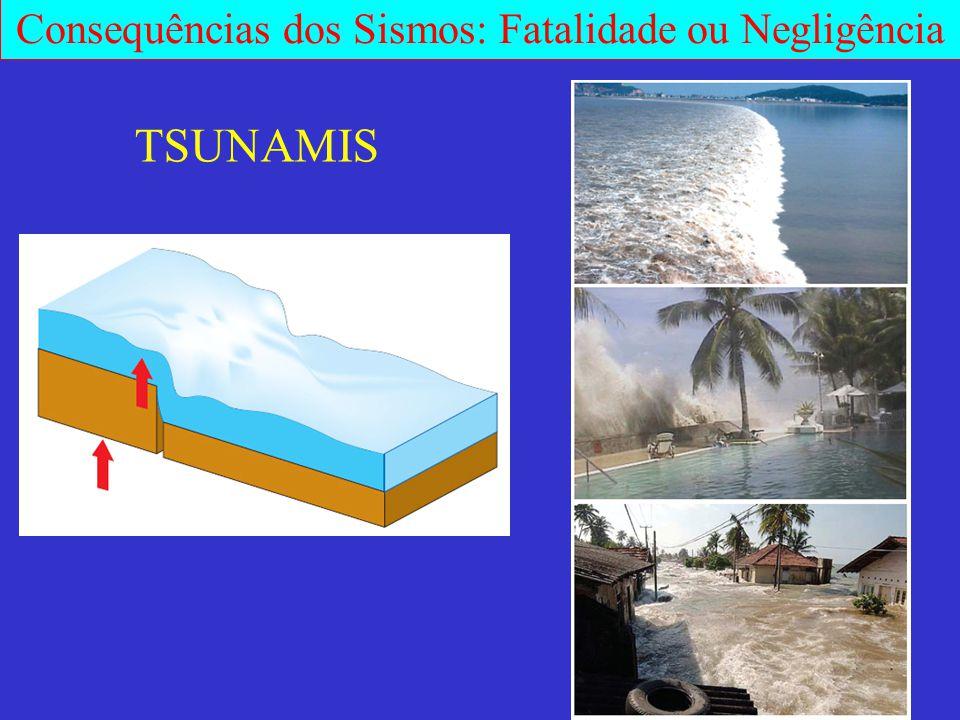 Consequências dos Sismos: Fatalidade ou Negligência TSUNAMIS