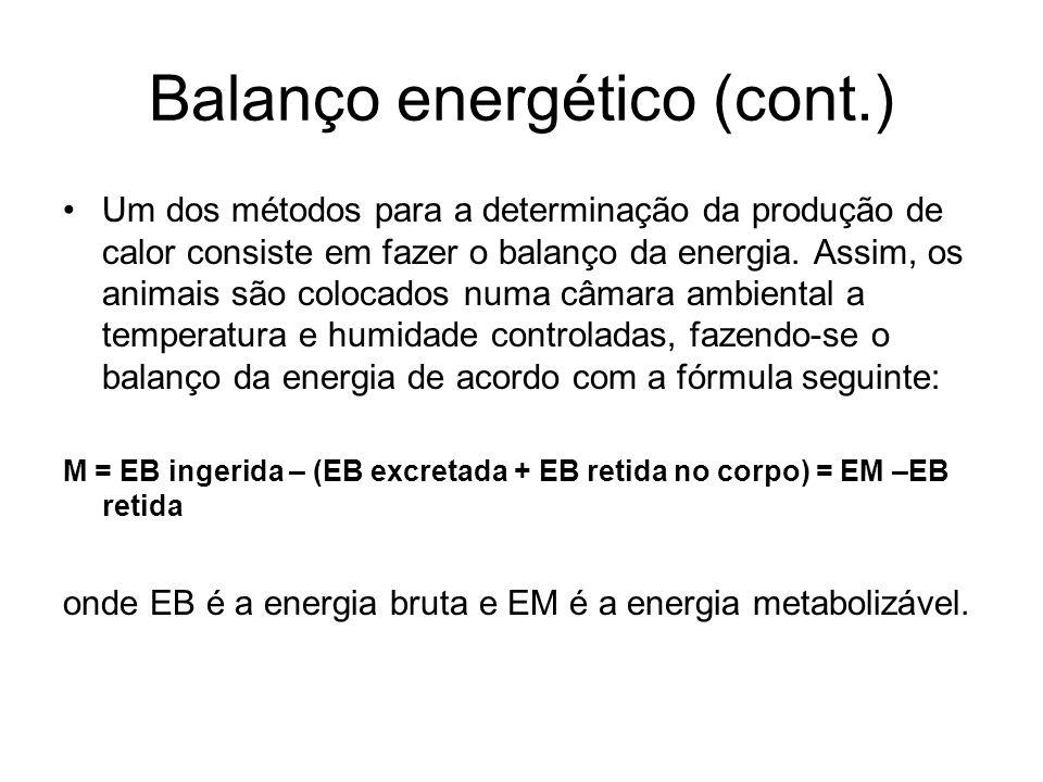 Balanço energético (cont.)