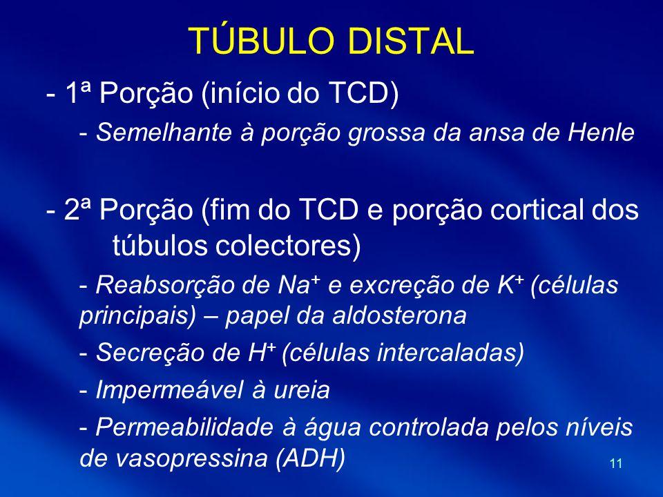 11 TÚBULO DISTAL - 1ª Porção (início do TCD) - Semelhante à porção grossa da ansa de Henle - 2ª Porção (fim do TCD e porção cortical dos túbulos colectores) - Reabsorção de Na + e excreção de K + (células principais) – papel da aldosterona - Secreção de H + (células intercaladas) - Impermeável à ureia - Permeabilidade à água controlada pelos níveis de vasopressina (ADH)