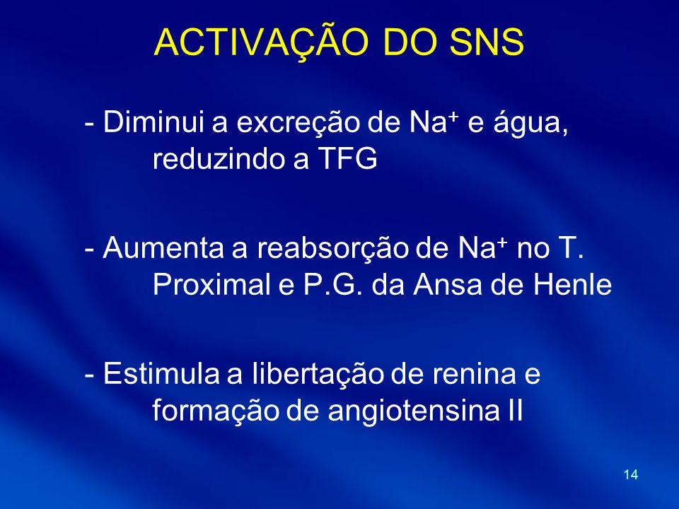 14 ACTIVAÇÃO DO SNS - Diminui a excreção de Na + e água, reduzindo a TFG - Aumenta a reabsorção de Na + no T. Proximal e P.G. da Ansa de Henle - Estim
