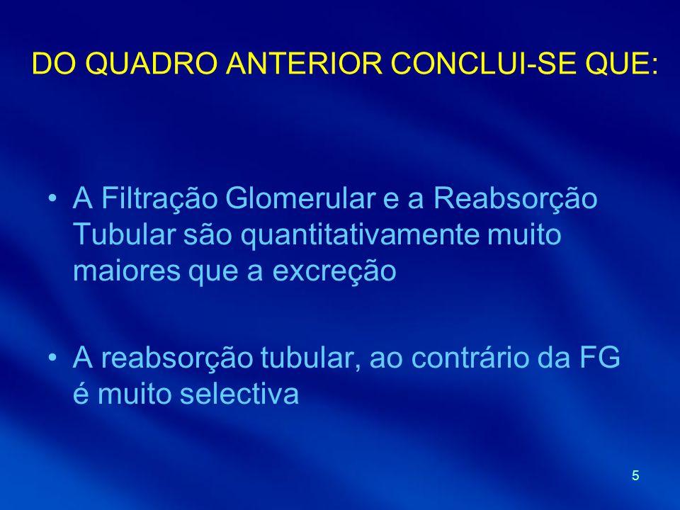 5 DO QUADRO ANTERIOR CONCLUI-SE QUE: A Filtração Glomerular e a Reabsorção Tubular são quantitativamente muito maiores que a excreção A reabsorção tub
