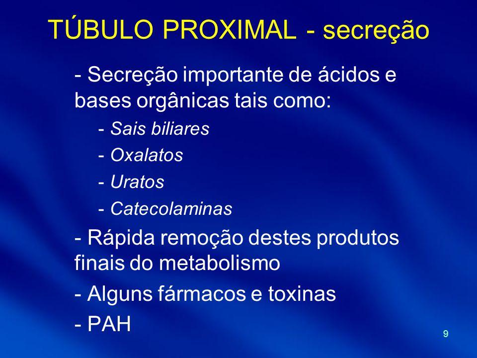 9 TÚBULO PROXIMAL - secreção - Secreção importante de ácidos e bases orgânicas tais como: - Sais biliares - Oxalatos - Uratos - Catecolaminas - Rápida