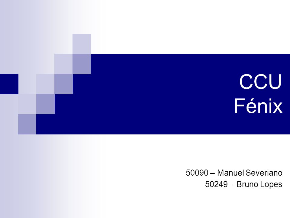 CCU Fénix 50090 – Manuel Severiano 50249 – Bruno Lopes