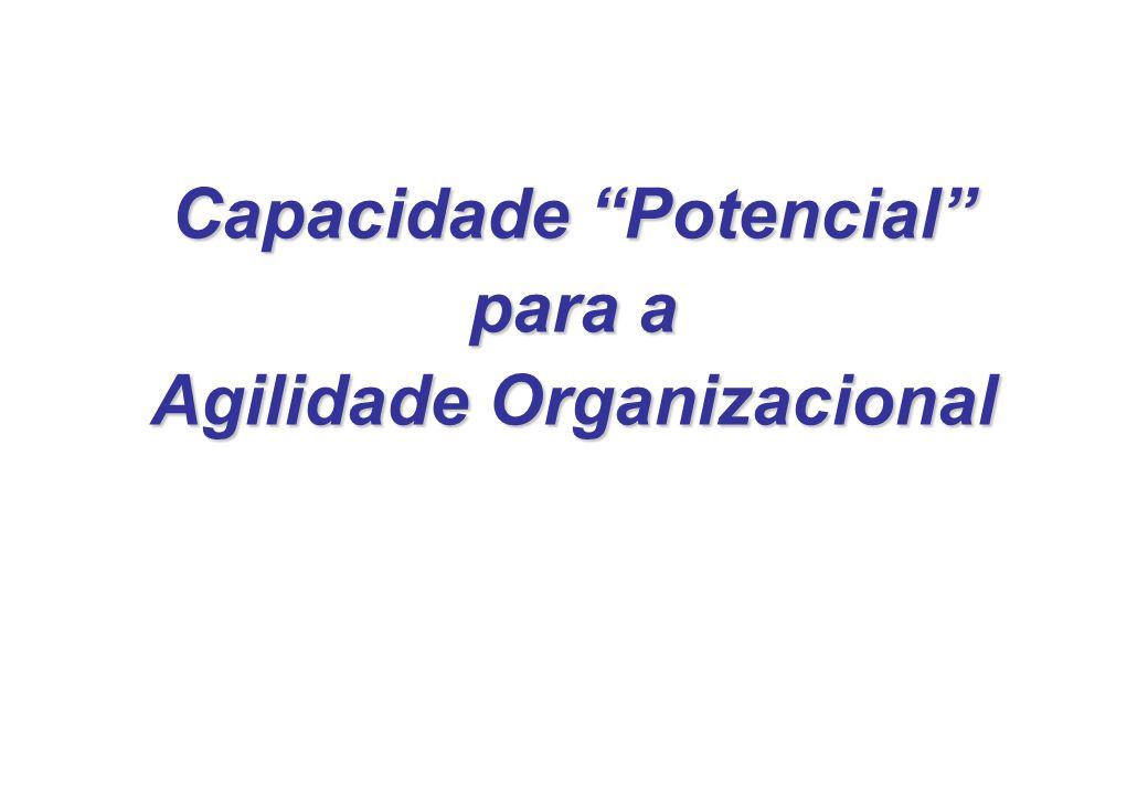 Capacidade Potencial para a Agilidade Organizacional