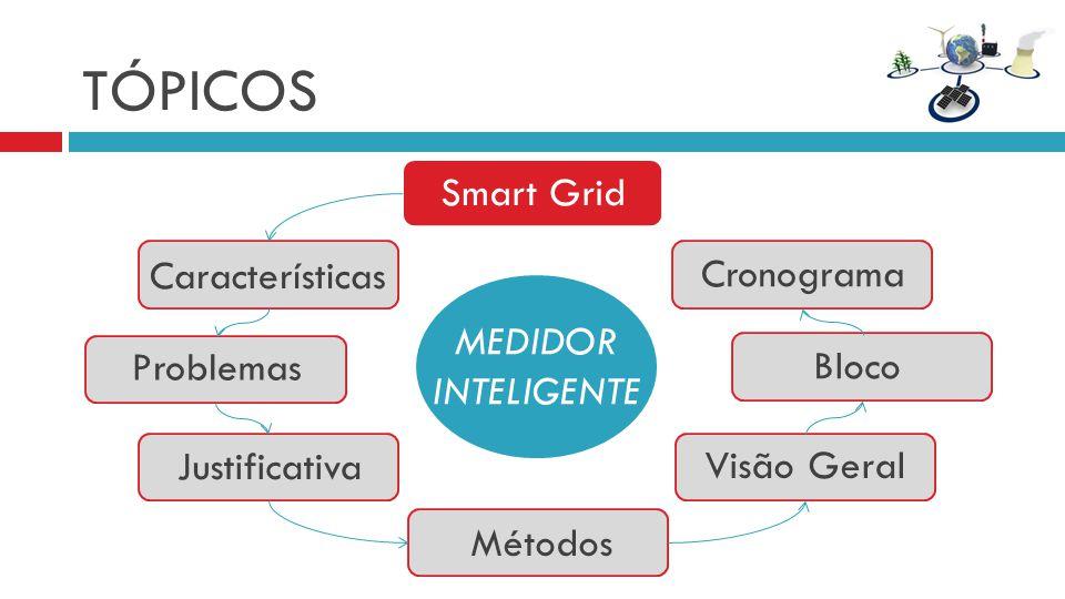 TÓPICOS MEDIDOR INTELIGENTE Características Problemas Smart Grid Justificativa Bloco Cronograma Métodos Visão Geral
