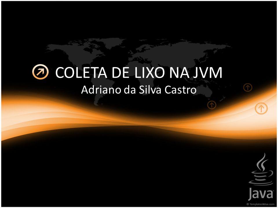 COLETA DE LIXO NA JVM Adriano da Silva Castro