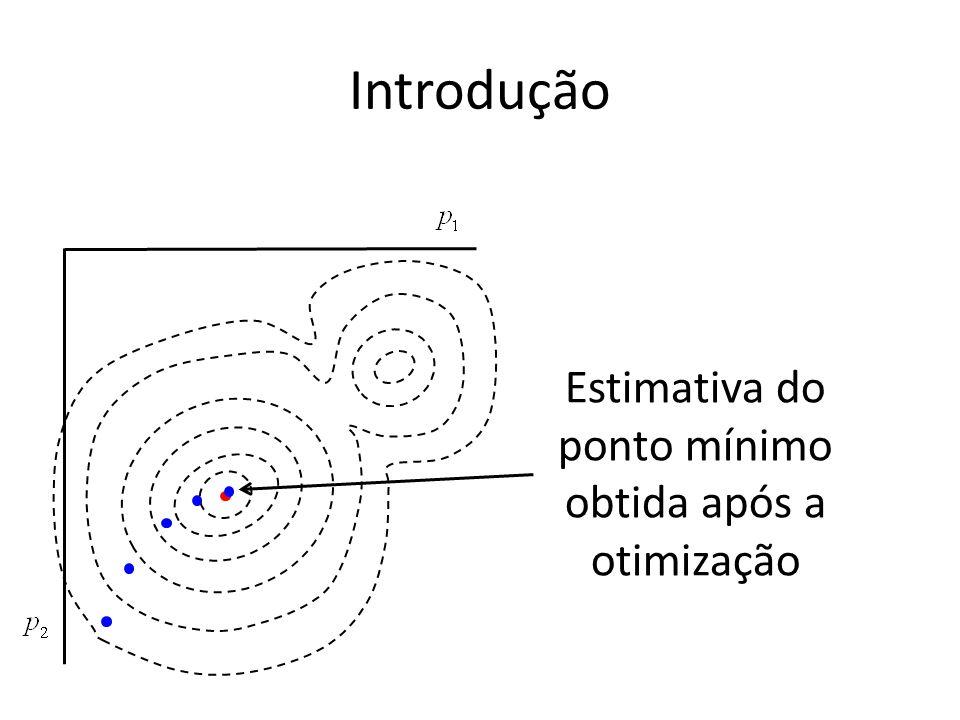 Estimativa do ponto mínimo obtida após a otimização