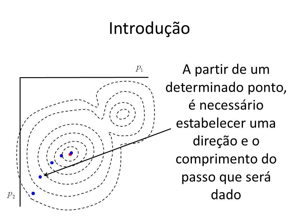 Introdução A partir de um determinado ponto, é necessário estabelecer uma direção e o comprimento do passo que será dado