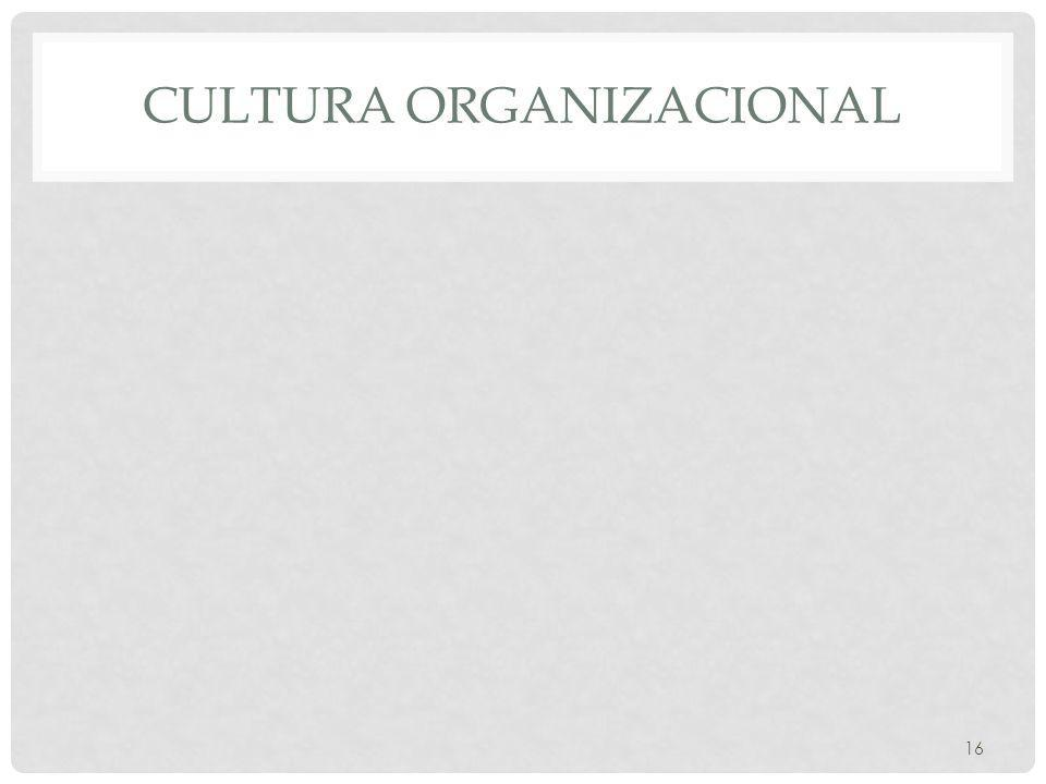 CULTURA ORGANIZACIONAL 16