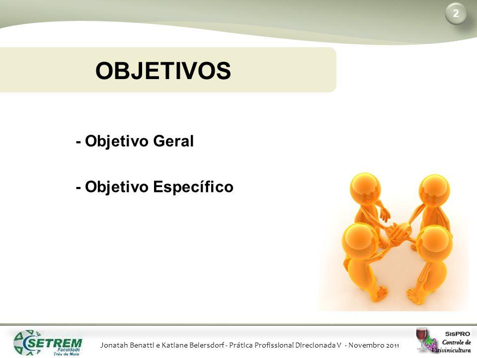 Jonatah Benatti e Katiane Beiersdorf - Prática Profissional Direcionada V - Novembro 2011 OBJETIVOS 2 - Objetivo Geral - Objetivo Específico