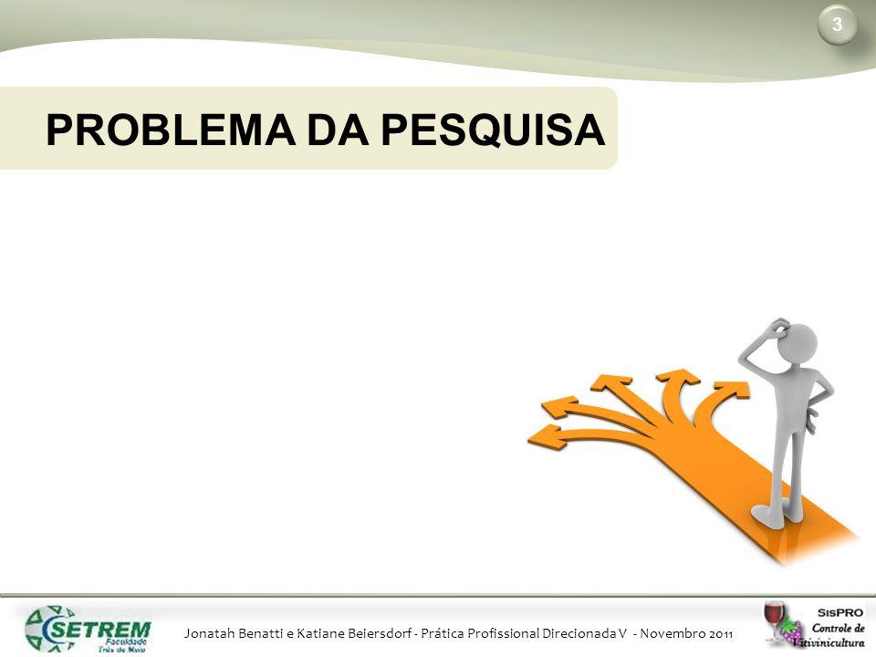 Jonatah Benatti e Katiane Beiersdorf - Prática Profissional Direcionada V - Novembro 2011 PROBLEMA DA PESQUISA 3