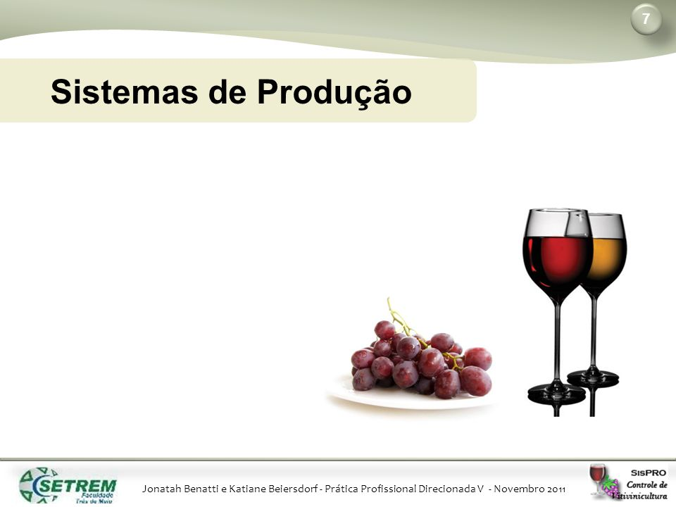 Jonatah Benatti e Katiane Beiersdorf - Prática Profissional Direcionada V - Novembro 2011 7 Sistemas de Produção