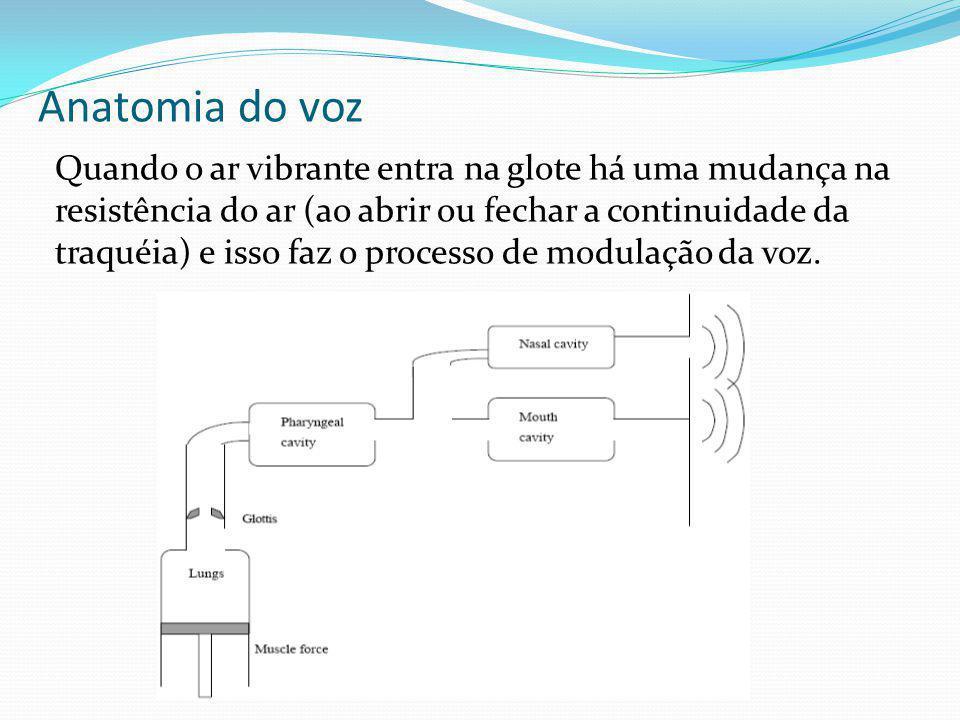 Anatomia do voz Quando o ar vibrante entra na glote há uma mudança na resistência do ar (ao abrir ou fechar a continuidade da traquéia) e isso faz o p