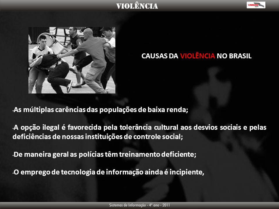 CAUSAS DA VIOLÊNCIA NO BRASIL As múltiplas carências das populações de baixa renda; A opção ilegal é favorecida pela tolerância cultural aos desvios s